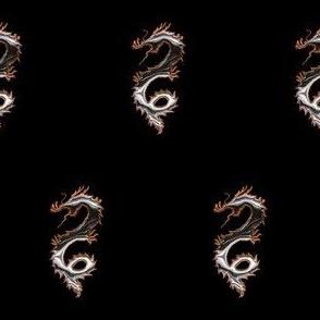 Black Silver Dragon, S