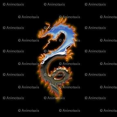 Fiery Metal Dragon, L