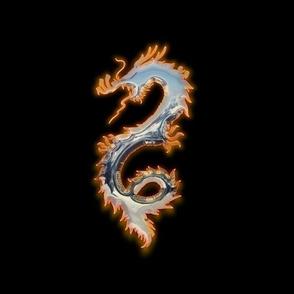 Fiery Tin Dragon, L