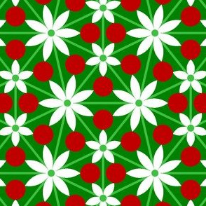 00899359 : holly leaf, flower + berry 7x vein