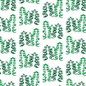 Curly Evergreens