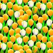 Rrtulippattern_yellow300_ed_shop_thumb