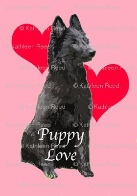 Puppy Love Belgian Sheepdog