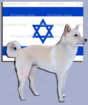 Canaan dog, National dog of Israel