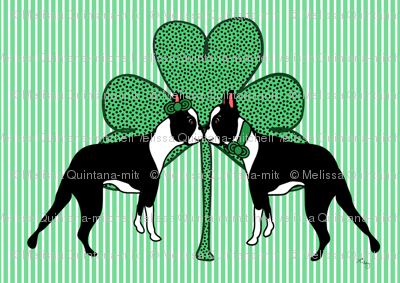 St. Patricks Day Boston Terriers