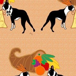 Happy Thanksgiving Boston Terrier Wishes