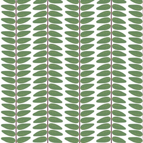Hypericum Hidcote leaf stripe - white (Coordinate for Buttercups on a bush)