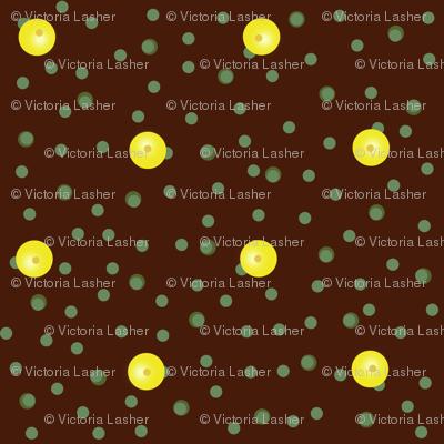 Buttercups on a bush coordinate dot (dark twig)