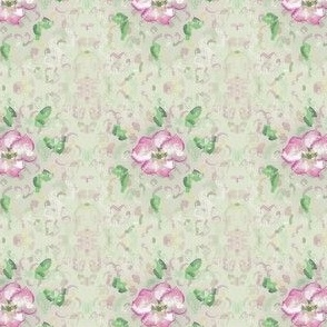 Cherry Flower Blossom