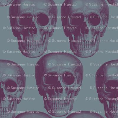 Dark skulls on dark background