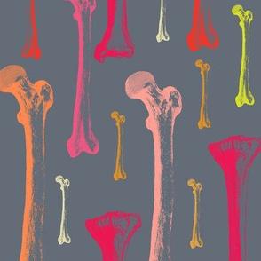 Bones red colors on dark grey background