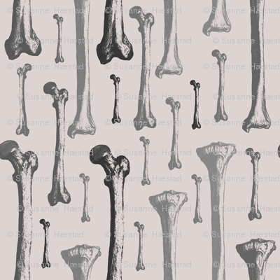 Bones on light grey