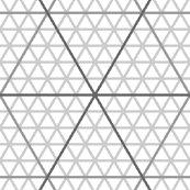 Graphr3-300p-4-d_shop_thumb