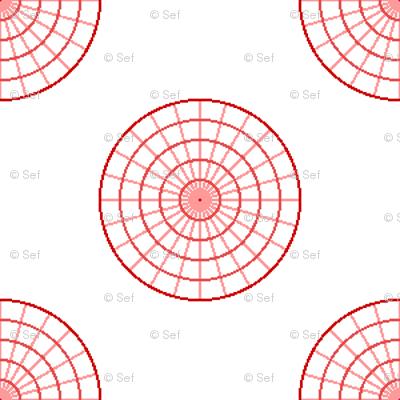 polar graph R4X