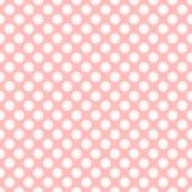 Rrrrparson_s_pink_dots_coordinate_shop_thumb