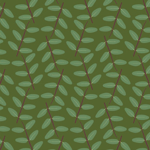 Hypericum Hidcote twig zigzag - dark green (Coordinate for Buttercups on a bush)