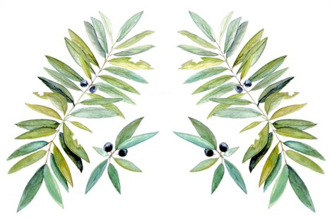 Rrrleaves_and_berries_print_shop_preview
