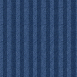 1 inch striped denim