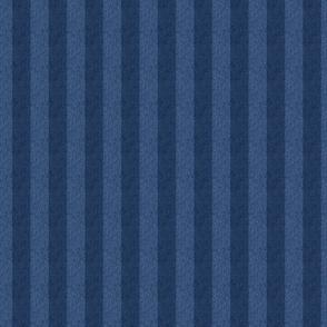 1 inch striped denim