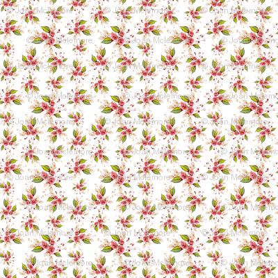 Parson's Roses Coordinate Toss