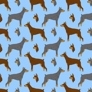 Dobermans - blue