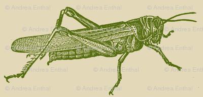 A Plague Of Giant Green Locusts
