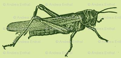 A Plague Of Little Green Locusts