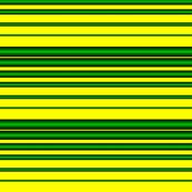 Eugene Oregon Duck Stripe