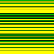 Eugene Oregon Duck Stripe