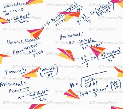 Physics of Flight white background, large
