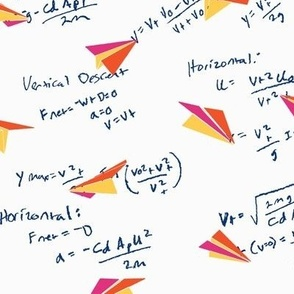 Physics of Flight white background, small