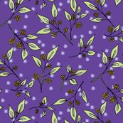 Rrrbrazenberries_in_the_starlight_shop_thumb