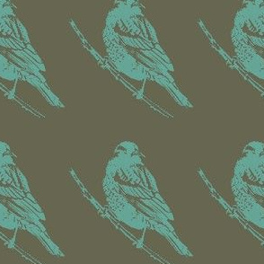 Red Winged Black Bird Female in Teal and Olive