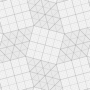 00919302 : S43graph 2 : greyscale