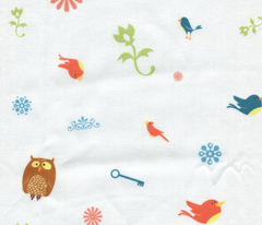 little birds and owls