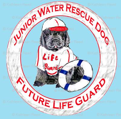 Life Guard Newfoundland Puppy
