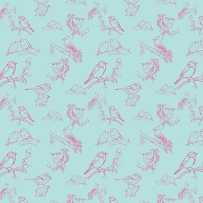 Bird Toile (turquoise pink)