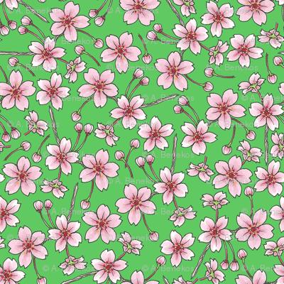 Sakura - Green