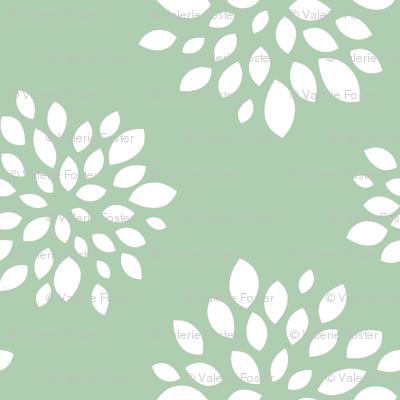 Robin Succulent