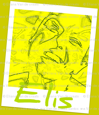 The Girl from Brazil Elis