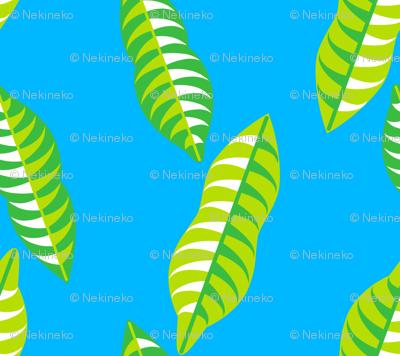 Mangosteen Leaves