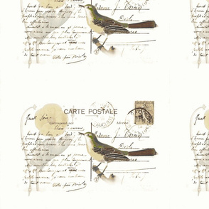 aviary letter- grey green tones