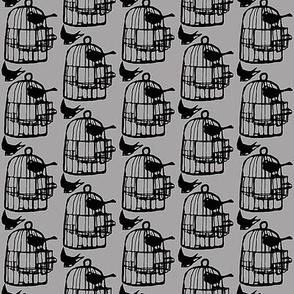 bird cage in grey