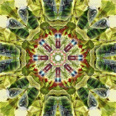 Multicolor Turmaline