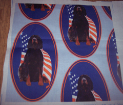 Rrgordon_setter_with_flag2_comment_137622_preview