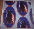 Rrgordon_setter_with_flag2_comment_137622_thumb