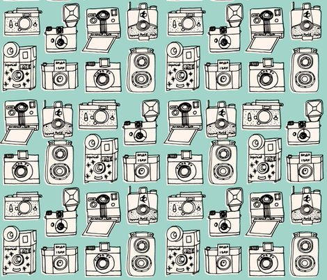 Rrrnew_cameras_pale_turquoise_shop_preview