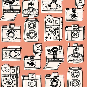 Vintage Cameras // blush peach rose coral kids nursery girls vintage shabby chic