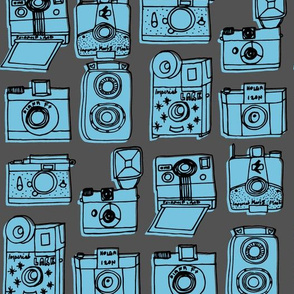 Vintage Cameras // vintage colors hand-drawn vintage charcoal