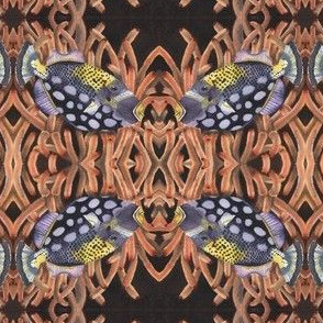 Handsome Fish 2